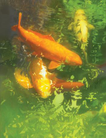 fish-koi-grouping-painting